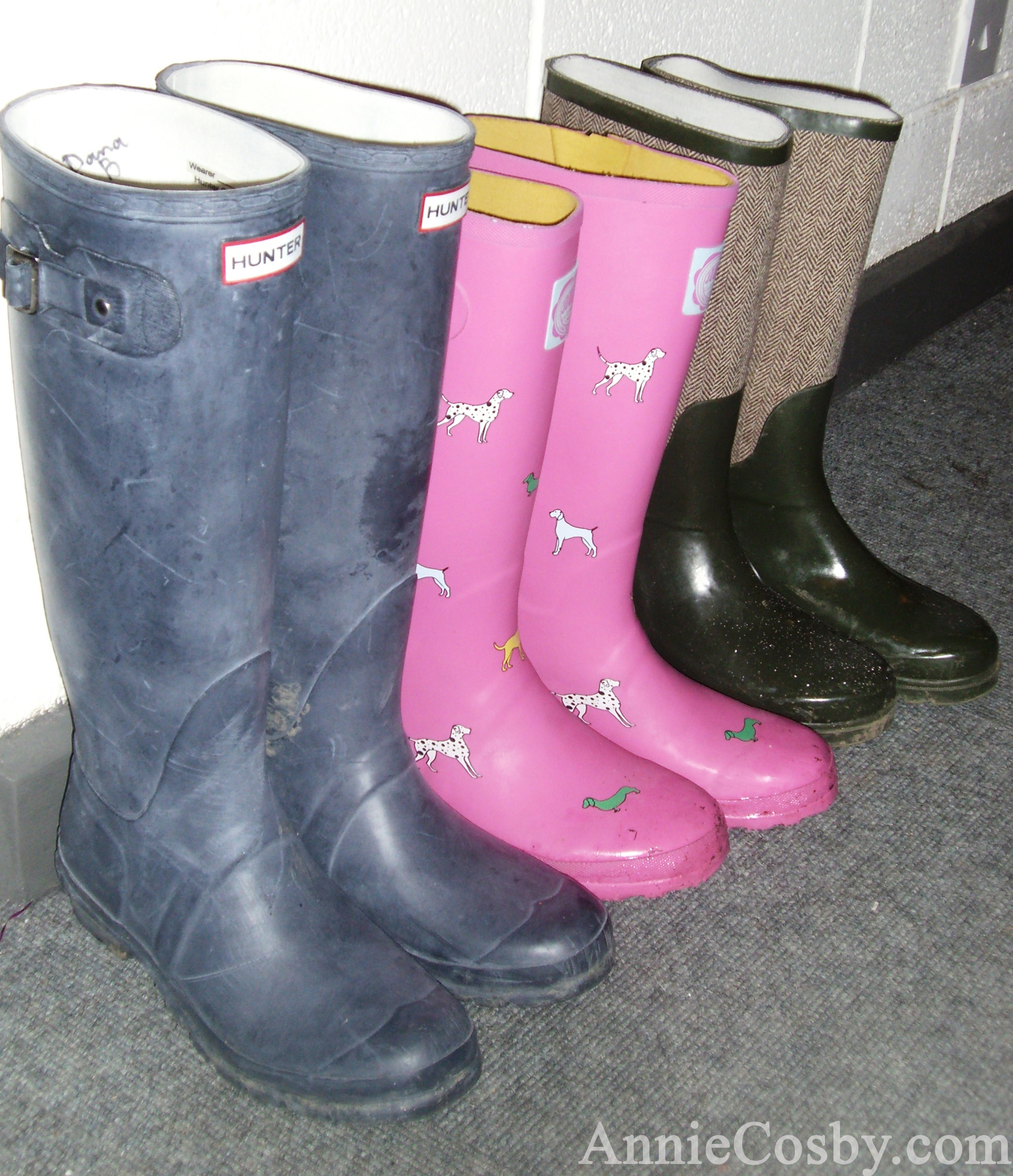 Irish wellies, Ireland